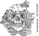 skull mushroom | Shutterstock .eps vector #527510269