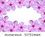pink flower pattern frame with... | Shutterstock . vector #527514664