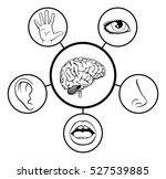 a science education...   Shutterstock . vector #527539885