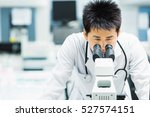 medical technologist is working ... | Shutterstock . vector #527574151