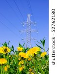Yellow flowers in a field on the background high voltage line - stock photo
