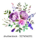 Purple Pink Peony Flowers...