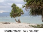 tropical beach  no people | Shutterstock . vector #527738509