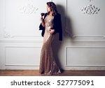 full length  fashionable... | Shutterstock . vector #527775091