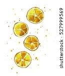 watercolor cocktail... | Shutterstock . vector #527999569