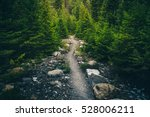 forest hiking trail. | Shutterstock . vector #528006211
