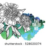 peonies. drawing by hand in... | Shutterstock .eps vector #528020374