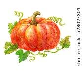 cute watercolor pumpkin... | Shutterstock . vector #528027301