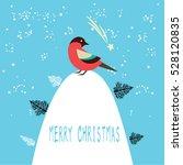 Merry Christmas Bird Greeting...