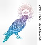 detailed hand drawn raven bird... | Shutterstock .eps vector #528134665