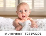 surprised funny expression cute ... | Shutterstock . vector #528193201