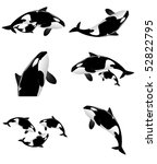Orca Collection