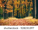 woman standing at the end of... | Shutterstock . vector #528231397
