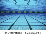 Underwater View Of A Swimming...