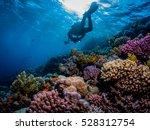 underwater photographer over...   Shutterstock . vector #528312754