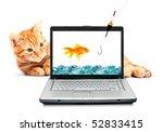 Stock photo goldfish cat laptop isolated on white background 52833415