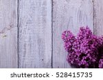 elderberry flower | Shutterstock . vector #528415735