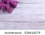 elderberry flower | Shutterstock . vector #528418279