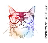 cute hipster   cat in retro... | Shutterstock .eps vector #528418951
