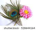 peacock feather with flower | Shutterstock . vector #528644164