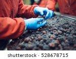 people at work. unrecognizable... | Shutterstock . vector #528678715