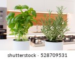basil and rosemary herbs in pot ... | Shutterstock . vector #528709531