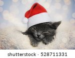 Stock photo cute santa kitten 528711331