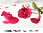 Stock photo red rose place on a clean white bed and a red rose petals strewn around 528720229