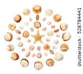 Pattern Of Exotic Seashells An...
