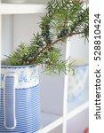 green pine tree  fir tree ... | Shutterstock . vector #528810424