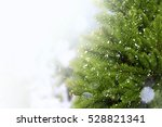 christmas tree with snow | Shutterstock . vector #528821341