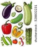 set of colored vegetables.... | Shutterstock .eps vector #528832231