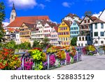 beautiful floral colorful town... | Shutterstock . vector #528835129