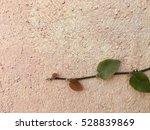 Natural Green Leaf Background...