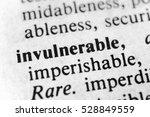 Small photo of Invulnerable