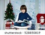 Cute Child  Boy  Reading A Boo...