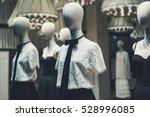 elegant women clothing in a...   Shutterstock . vector #528996085