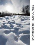snow field texture background | Shutterstock . vector #529007581