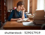 portrait of clever student in... | Shutterstock . vector #529017919