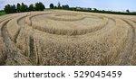 turin italy june 22  2014   ufo ... | Shutterstock . vector #529045459