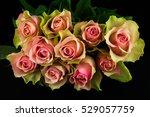 close up of bouquet pastel... | Shutterstock . vector #529057759