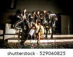 multi ethnic group of friends...   Shutterstock . vector #529060825