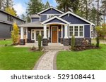 beautiful exterior of newly... | Shutterstock . vector #529108441