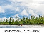 wooden canoes floated down the... | Shutterstock . vector #529131049