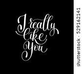 i really like you. love letter  ... | Shutterstock .eps vector #529162141