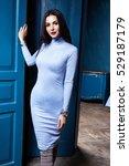 sexy brunette woman skinny... | Shutterstock . vector #529187179