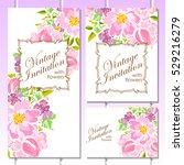 vintage delicate invitation... | Shutterstock . vector #529216279