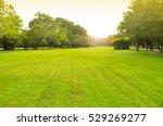 the chatuchak park is an...   Shutterstock . vector #529269277