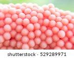eggs  shellfish  cherry macro