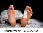 the dead man's body with blank... | Shutterstock . vector #529327765